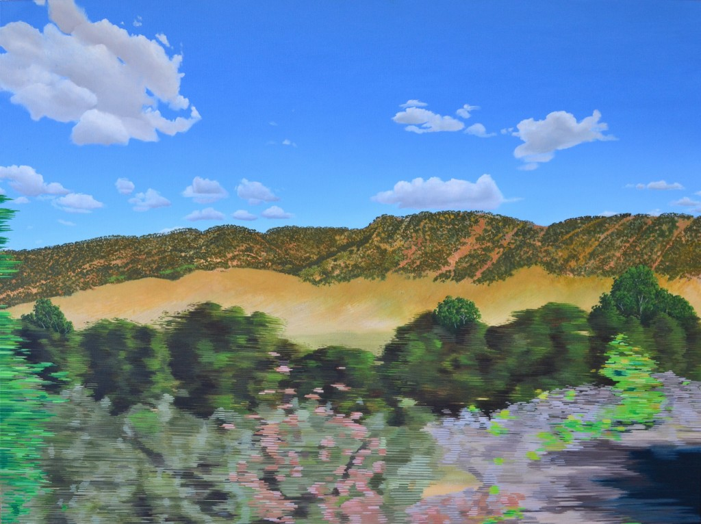 north>south (Darwin>Adelaide) 2014 oil on canvas 1018 x 758 x 35mm